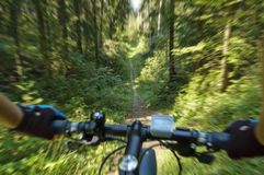 MTB bike coming down the trail. Stock Images