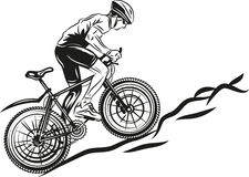 MTB biker. Vector drawing of mountain biker Stock Image