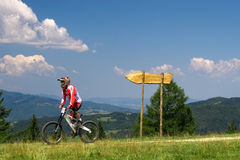 MTB Biker. MTB extreme biker and wooden signpost stock photography