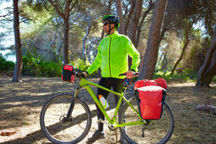 MTB Biker Bicycle touring in a pine forest Royalty Free Stock Photography