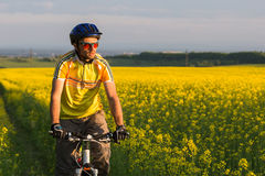 Mtb biker is cycling Royalty Free Stock Image
