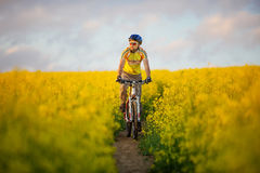 Mtb biker is cycling Stock Image
