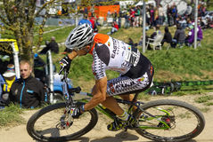 MTB Bundesliga racing 2011, Muensingen, Germany Royalty Free Stock Photography