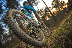 MTB cyclist on outdoor trail Stock Images