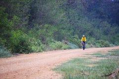 Mtb de la bici de montaña del montar a caballo del hombre joven en el uso de la pista de la selva para el deporte Imagen de archivo