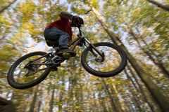 Mtb Dirt Jump Royalty Free Stock Image