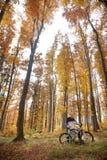 Mtb extreme. Biking downhill on hard tail Royalty Free Stock Photography