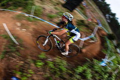 MTB Girl Speed Blur X Country  Stock Images