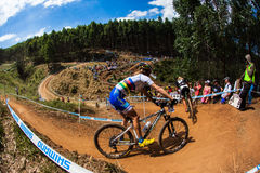 MTB Girls X Country Racing  Stock Images