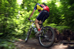 Mtb racer. Photo of a mtb racer Royalty Free Stock Images