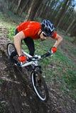 Mtb radfahrendes Fahrrad Stockfotos