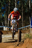 MTB Rider Race Flight Step  Stock Photography