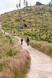 MTB riders on hiking trail in Beskid Slaski mountains Stock Image