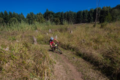 MTB X Country Forests Rider Royalty Free Stock Photos