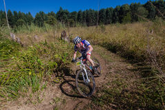 MTB X Country Forests Rider Royalty Free Stock Images