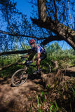 MTB X Country Forests Rider  Stock Images