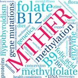 MTHFR Word Cloud. On a white background Royalty Free Stock Photos