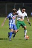 MTK Budapest - fotbollsmatch för Ferencvaros OTP bankliga Royaltyfria Foton