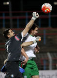 MTK Budapest - fotbollsmatch för Ferencvaros OTP bankliga Royaltyfri Fotografi