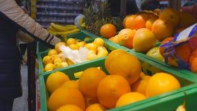 Mtsensk, Rosja, 23 2017 Grudzień Artykuł wstępny - kupienie owoc w sklepie Świezi organicznie warzywa i owoc na półce zbiory