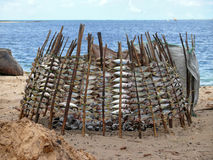 Mtwara, Fischvorlage trocknete über einem Feuer. Stockbilder