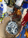 MTWARA, Tanzania - December 3, 2008: the Fish market. Royalty Free Stock Images