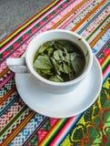 Muña秘鲁薄荷的茶 免版税库存照片