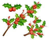 Muérdago plano decorativo Ramas con las hojas rojas del verde de las bayas Ornamento de la Navidad Ejemplo del vector aislado en  Foto de archivo