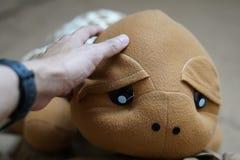 Muñeca de la tortuga Fotos de archivo