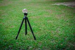 Muñeca del conejo en un trípode en un campo Fotos de archivo