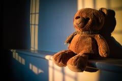 Muñeca del oso de peluche que se sienta al lado de la ventana con la luz de la puesta del sol poli Fotos de archivo libres de regalías