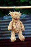 Muñeca del oso de peluche suave en la ejecución para secar la cuerda para tender la ropa que toma el sol en foco selectivo de la  fotos de archivo libres de regalías