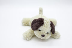 Muñeca del perro Fotos de archivo