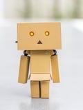 Muñeca derecha educada de la caja Foto de archivo libre de regalías