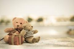 Muñeca dos Imagen de archivo libre de regalías