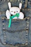 Muñeca en el bolsillo Imagen de archivo