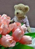 Muñeca linda del oso y flores rosadas del tulipán Imagen de archivo libre de regalías