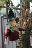 Muñeca linda del peregrino de la acción de gracias en una rama Imagen de archivo libre de regalías