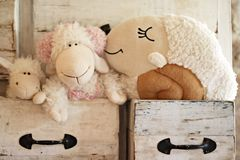 Muñeca preciosa de las ovejas en el cajón Imagen de archivo