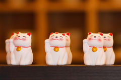 Muñecas de cerámica del gato de Maneki Neko en estante de madera Foto de archivo