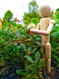 muñecas de madera en el jardín Foto de archivo libre de regalías