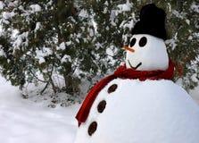 Muñeco de nieve Fotografía de archivo libre de regalías