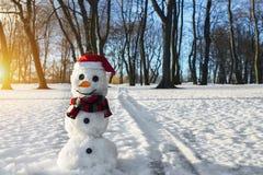 Muñeco de nieve Imagen de archivo libre de regalías