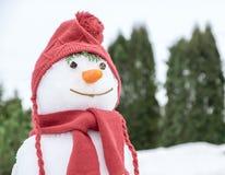 Muñeco de nieve con un sombrero rosado Imágenes de archivo libres de regalías