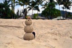 Muñeco de nieve de Hawaiin Fotos de archivo libres de regalías