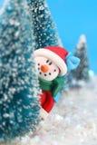 Muñeco de nieve de ocultación Imágenes de archivo libres de regalías