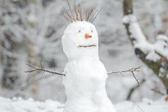 Muñeco de nieve del blanco nevado con la nariz de la zanahoria en fondo al aire libre de la Navidad del invierno Imagen de archivo