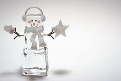 Muñeco de nieve del cubo de hielo Fotografía de archivo