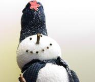 Muñeco de nieve del invierno fotos de archivo libres de regalías