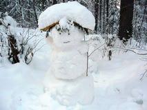 Muñeco de nieve divertido del bosque fotografía de archivo libre de regalías